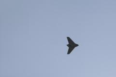 2010-warbird-wolfgang-0665