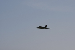 2010-warbird-wolfgang-0691-1